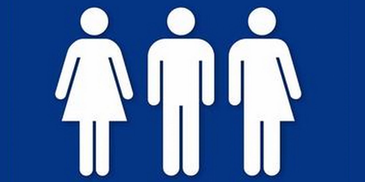 Transgender bathroom laws seriously steve tobak for Transgender bathroom laws by state
